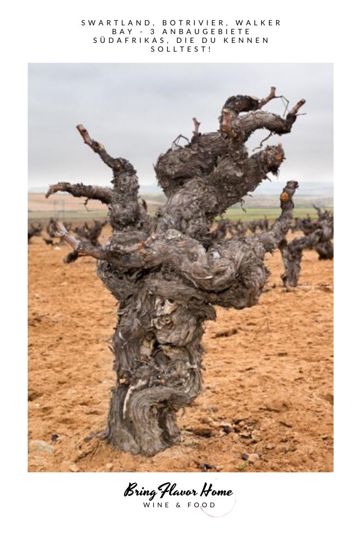 Swartland Wines Anbaugebiet Swartland Südafrika