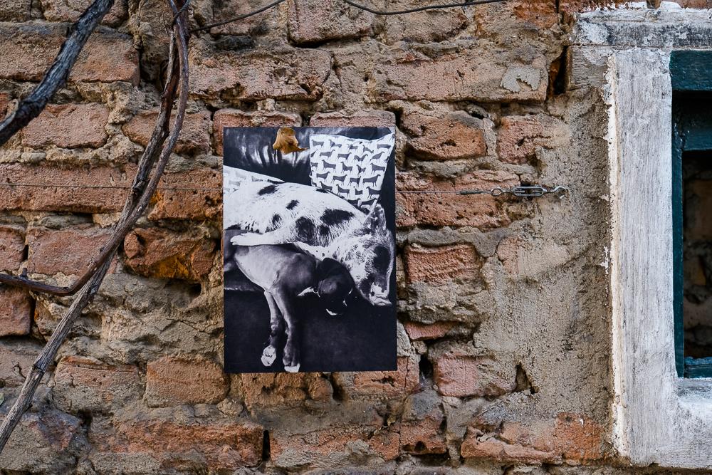 Bertus Basson Speck & Bone Stellenbosch Südafrika