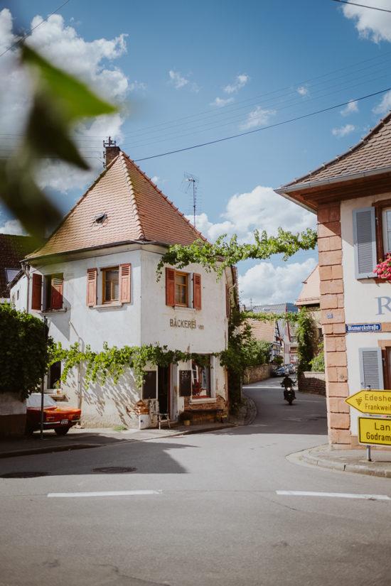 Tipps für deinen Urlaub in der Pfalz an der deutschen Weinstrasse