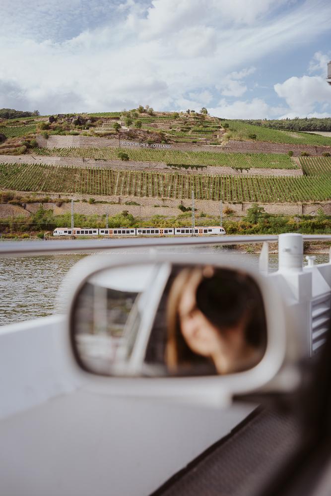 Blick auf die Germania im Weinanbaugebiet Rheingau