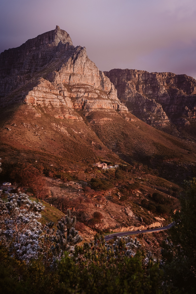 Weinanbaugebiete in Südafrika, die du kennen solltest